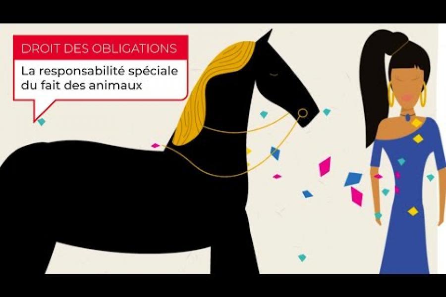 [Cas pratique animé - Droit des obligations] La responsabilité spéciale du fait des animaux